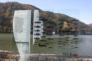 Fischlehrpfad Obermühl Obermühl