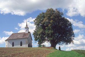 Mühlholzkapelle Lembach