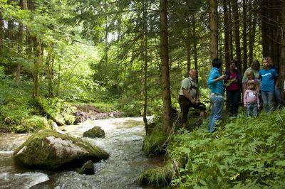 Landschaftsschule Donauschlinge Niederkappel