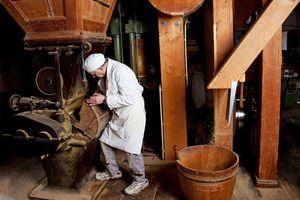 Ölmühle Haslach, © Ölmühle Haslach, TV Böhmerwald
